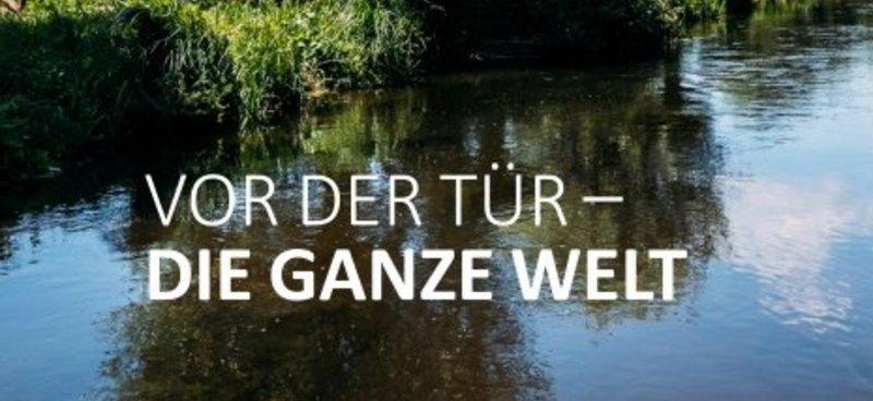 Sommerferien: Dankeschön-Aktion für treue VRS-Kunden